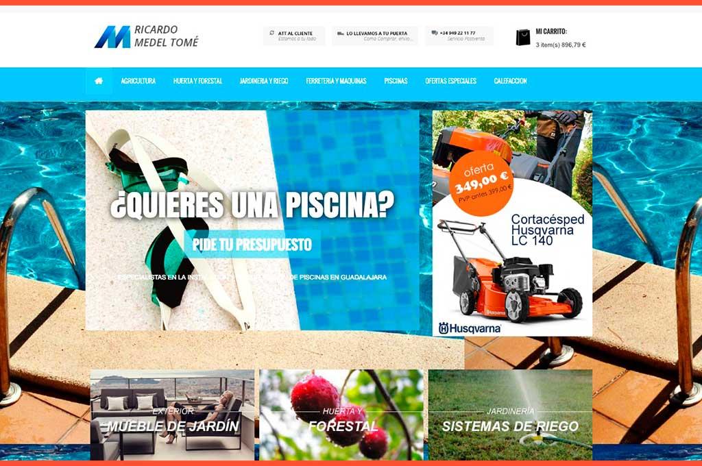 Página de inicio web Medel Tomé